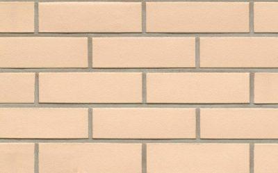 Клинкерная фасадная плитка Feldhaus Klinker R100 perla liso, 240*71*9  мм
